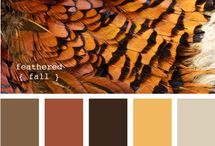 color inspiration / by Pam Mcl