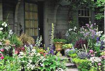 Paisagismo/ Jardinagem/ Decoração