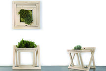 SCEG_Slice / A portion of garden: boiserie or tray ever changing synesthesia