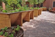 Accessable Gardens