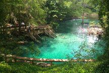 blue springs stste. park