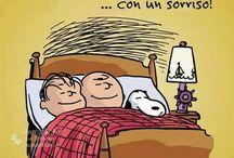 Peanuts's nights
