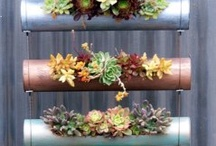 Hanging gardens or planters