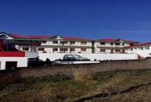 Budget Hotels in Palampur / Get the best Information about Palampur, Himachal Pradesh Tourism. Palampur is a popular tourist place in Himachal Pradesh, in the Kangra Valley in India. For more details visit us- www.bagoraheights.com