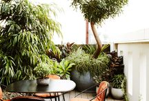 Small courtyards