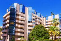 Properties for rent in Monaco