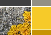Sunshine and Gravel: future apartment decor / I love the color palette of gray and yellow.  Furniture, decor ideas, and more.