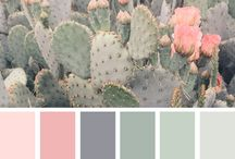 Cacti colours room theme.