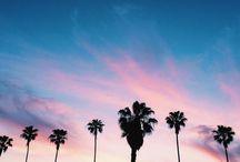 ✧Pweetty Skies ✧