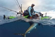 Kayak Fishing HUB Videos / The latest paddling and kayak fishing videos from around the web.