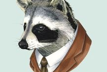 I love raccoons! and you? / Raccoons, raccoons and raccoons :)