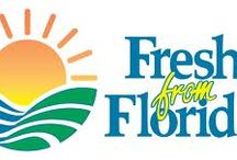 """""""Fresh from Florida"""" / Scentsational Soaps is certified """"Fresh from Florida"""" featuring authentic Florida-grown organic sugar from South Florida farms. Pure Florida honey products by local Bee Keeper Farmers. Pure mineral rich sea salt collected from the waters of the Atlantic ocean by Florida salt farmers. Nurtured by nature, cultivated by artisanal methods. We take pride in supporting our agricultural farm lands, coasts, and preserving our natural habitat. We support our Earth and Sea!"""