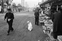 戦前、戦後の日本