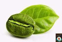 Coffee Green Beans / Coffee Green Beans @sonofresco.com