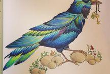 JB Raven