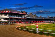 Horse Racing - Saratoga Springs NY