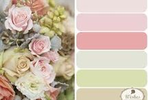 paleta de cores -guia