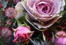 Flowers & Blumensträße