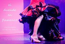 El Duende en Flamenco / flamenco Andalucia