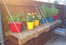 Gardening and outdoors