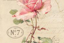 rose printing