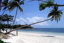 Travel to Tanjung Pinang