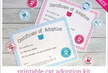 kitty adoption certificate