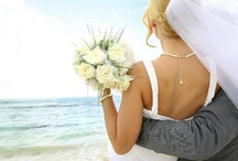 Wedding / Wedding dresses, hair, shoes, and accessories.