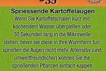 Wurmkiste FAQ / Einige Tipps rund um Wurmkiste und Kompostwürmer.