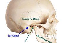 temporomandibular joint dysfunctions (TMJ) - st. szczękowo żuchwowy