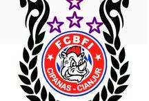 Logo Regional / Logo Regional-Regional FCBFI
