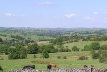 Like us on FaceBook. Paddock House Farm Holiday Cottages