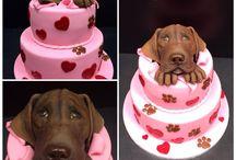 Cake for kids / torty pre deti