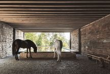 Horse establishment