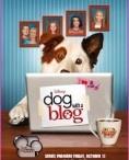 Hund mit Blog♥#