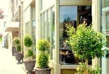 Where to Dine / Looking for somewhere new to dine? Come explore Cambridge- hundreds of restaurants to choose from!