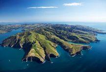 Güney adaları Yeni Zelanda