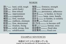 japaness study