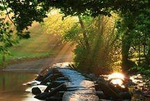 Nature--- Natureza