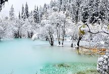 WINTER & SNOW / winter