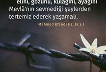 Mahmud Usta Osmanoğlu