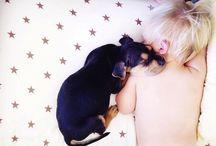 Babies & Puppies