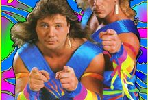 Wrestling Heroes and Style gurus / by colin gower