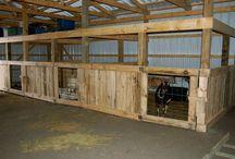Goat stall