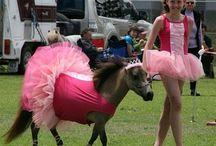 Pony fancy dress