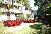 Casa Feliz Weddings / Orlando Harpist - Casa Feliz weddings, Winter Park, FL #casafelizwedding #Orlando #harpist #wedding