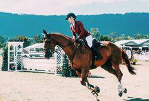 Horse Riding❣️