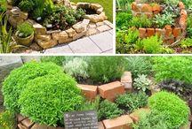 Zahrada / Bylinky, kvítí a tak