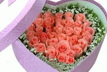 Online Flower Basket / Sending flowers is like a fashion these days and flower baskets is the option to send anyone for their special occasions or new beginning. http://www.onlineflowersgift.com/bouquet-type/flower-basket