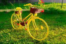 yelow garden bicycle
